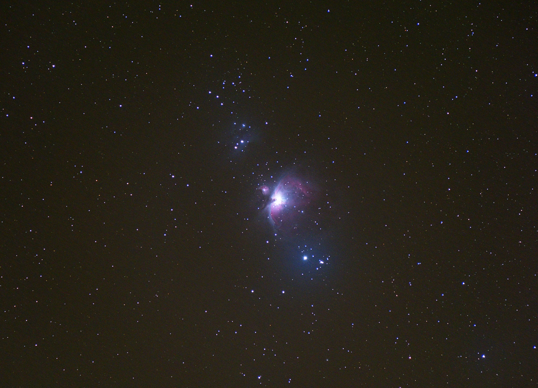 The Orion Nebula was captured by Mark Coull a few nights ago