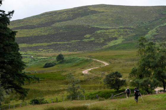 The Glen Dye estate