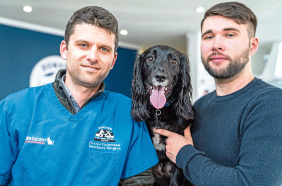 Jack at Donview Vets in Inverurie with Clinical Director Charlie Carnochan and owner Mark Anderson