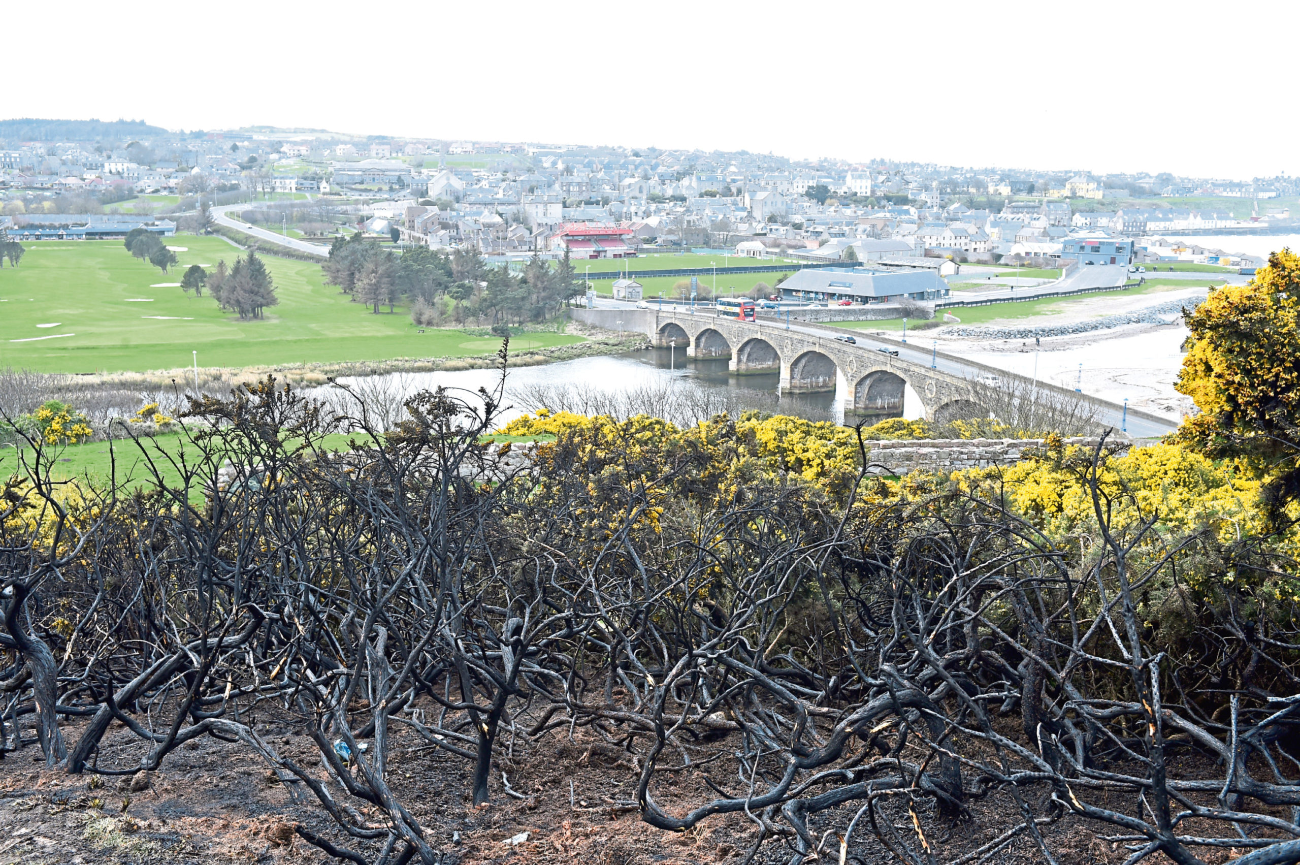 The site of yesterday's gorse fire near Macduff
