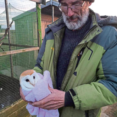 Keith Marley with a rescued barn owl