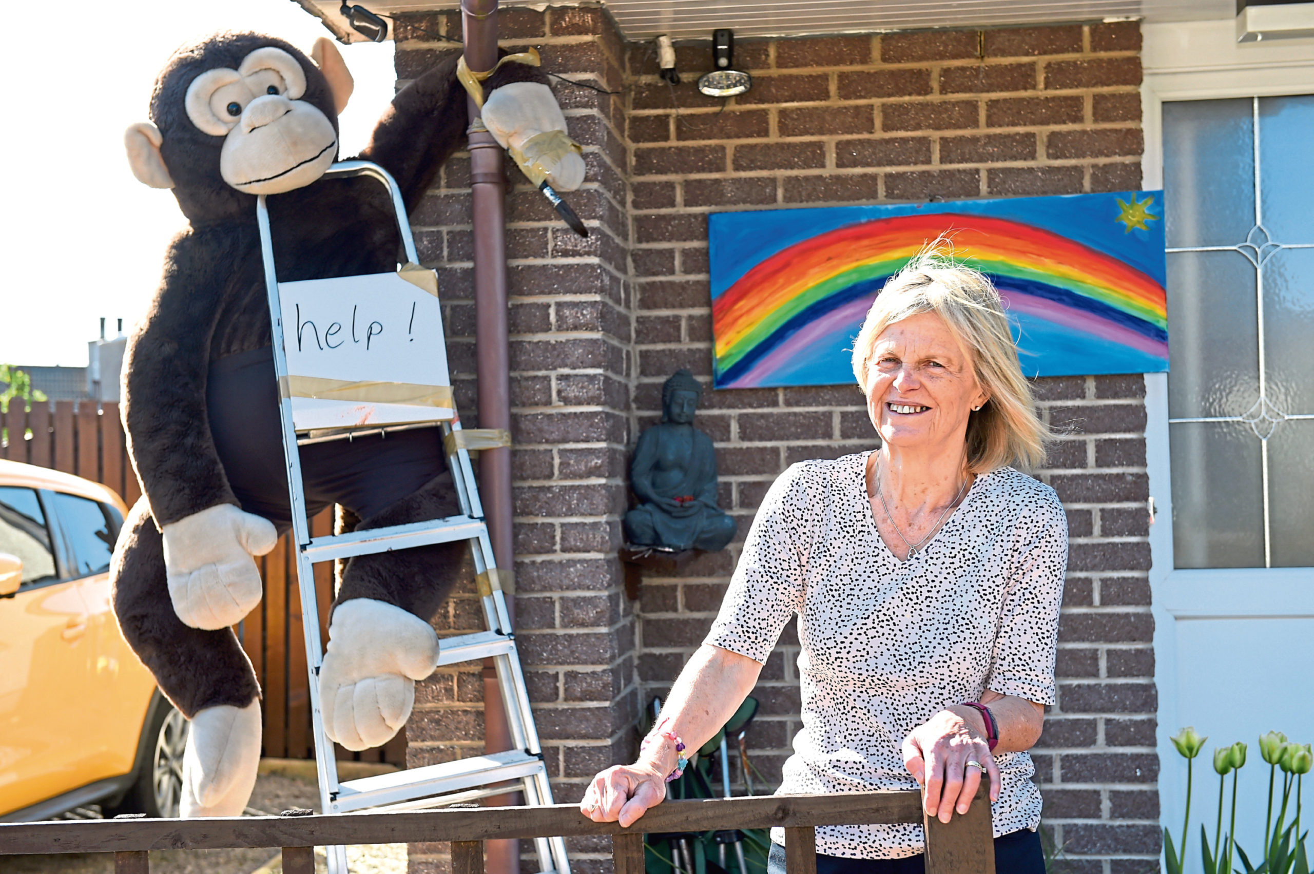 Lynne Houston with Gary falling off his ladder