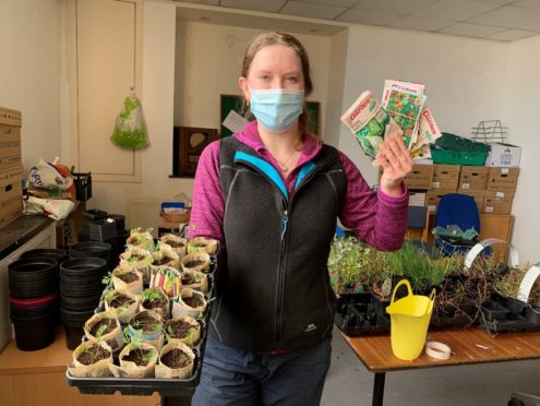 Rebecca Dunn, Cfine community growing development worker