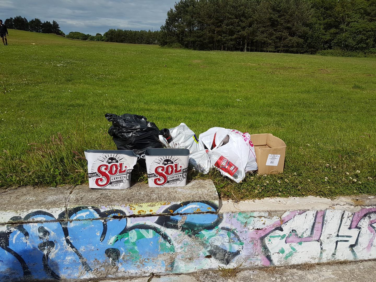 Some of the rubbish collected by the Friends of Westfield Park