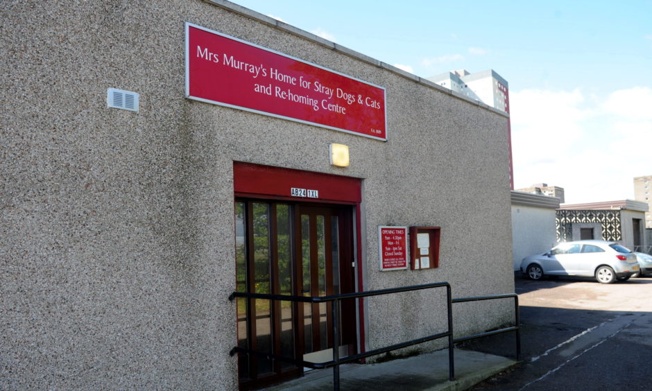 Mrs Murray's Home for Stray Dogs and Cats in Seaton