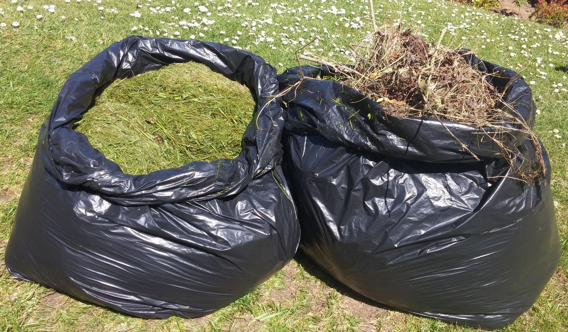 Garden waste points will be opened up in the north-east from Saturday