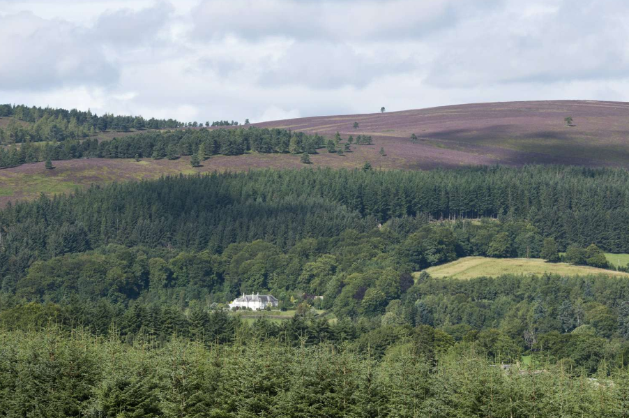 The Kildrummy estate near Alford