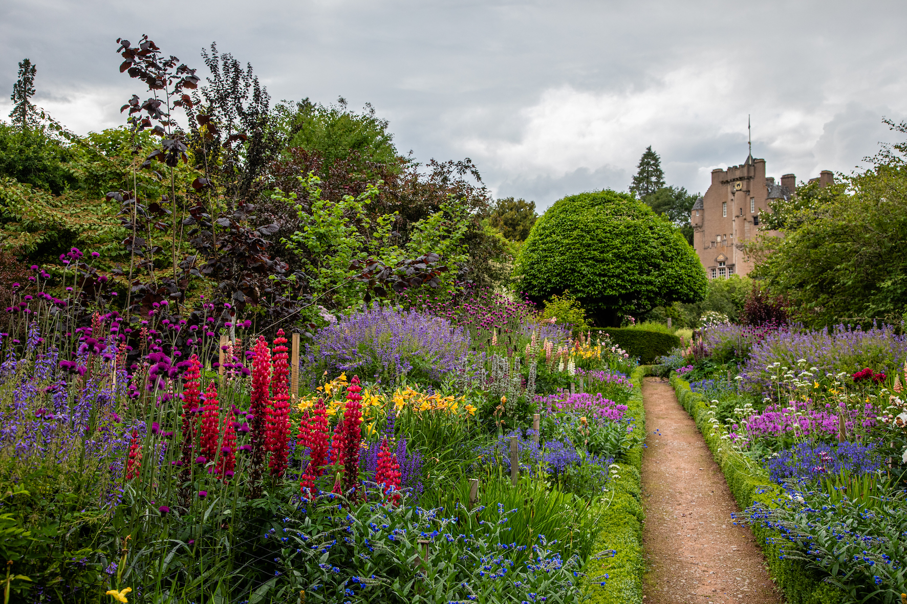 Crathes Castle gardens in bloom to welcome visitors for the first time since March.