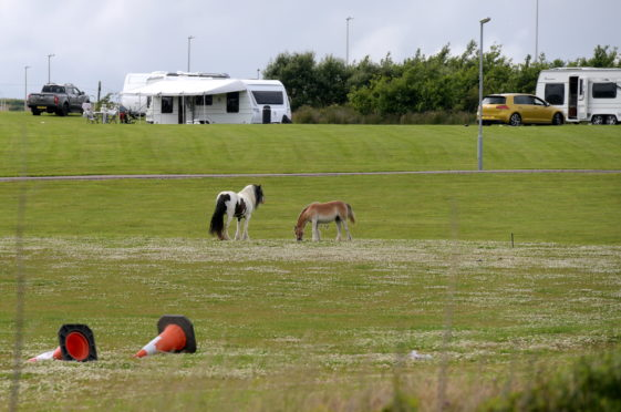The Travellers' vehicles and horses at Aberdeen Gateway. Picture by Kath Flannery