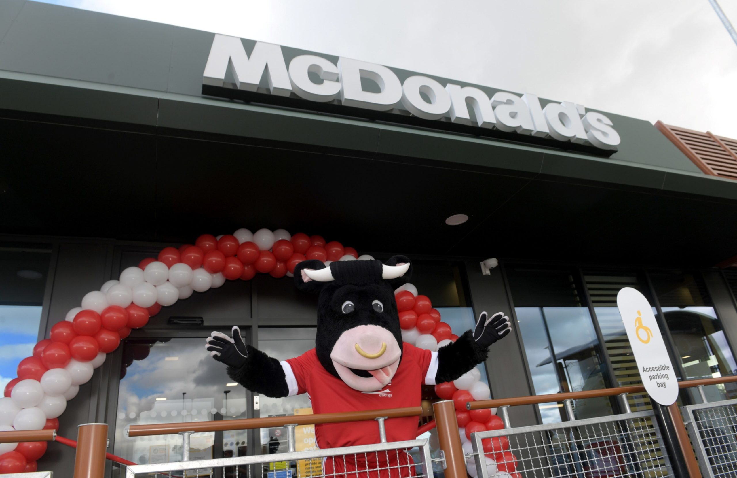 Angus the Bull cut the ribbon at the Westhill restaurant. Picture by Kath Flannery