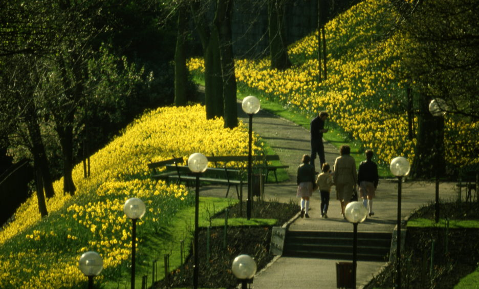 A family enjoys spring in Union Terrace Gardens in the late 1970s. Daffodils adorn the banks at the southern end of the park.