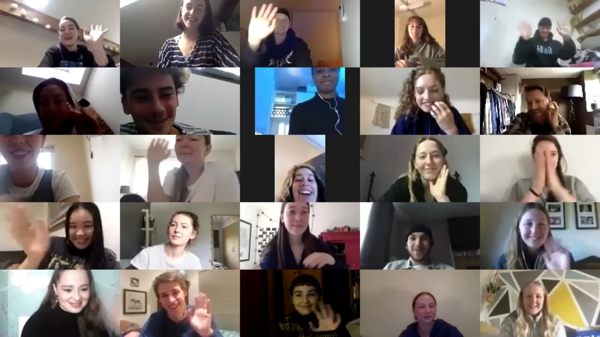 Project C participants on Zoom