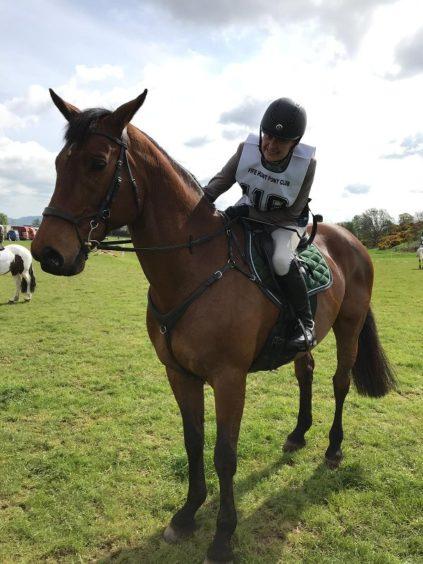 562 - Sydney (Horse)