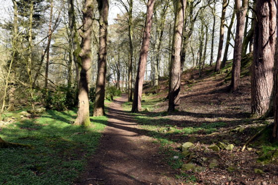 Caroline's Well Woods in Ellon, where the path is planned. Picture by Heather Fowlie