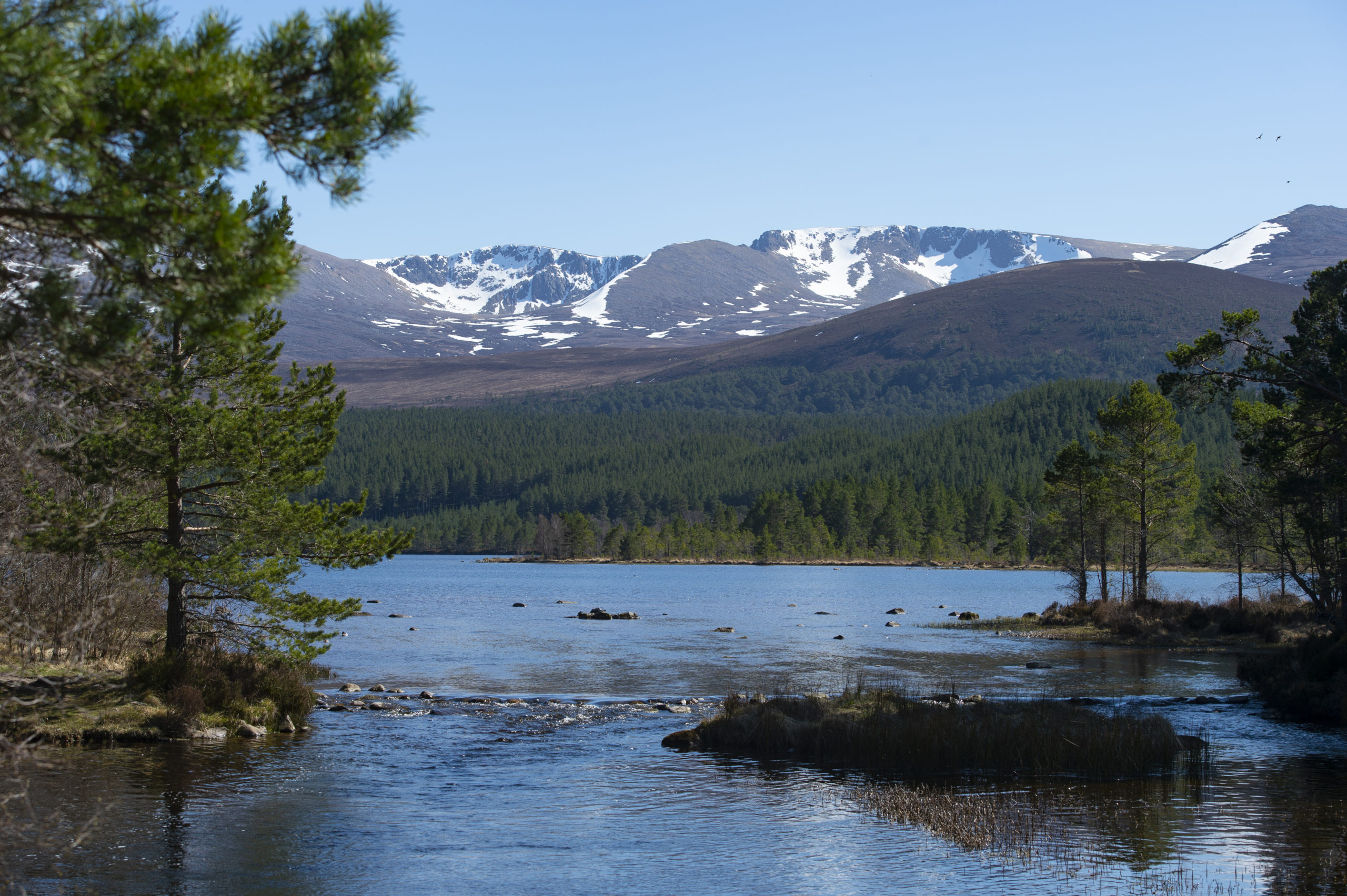 The fund will be available to projects within Cairngorms National Park. Picture by Sandy McCook