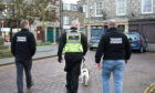 Dixie assists Trading Standards with Operation Bermuda. Picture by Paul Glendell