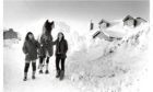 1984: A first in the snows of Chapel of Garioch for Sullivan with his owner, Loreen Macklin, Broc House (right) and groom Sammi Pettifer.