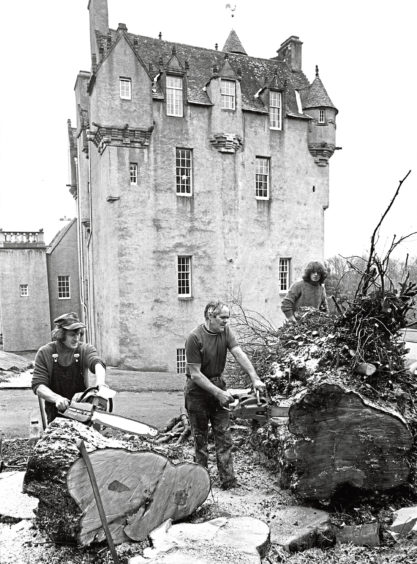 1978: A 200-year-old tree is cut down at Crathes Castle. The tree, near the car park, was in a dangerous condition but it is the trust's policy top plant two trees for every one taken down.