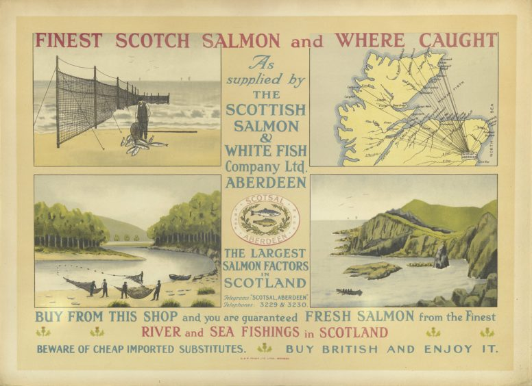 Poster for The Scottish Salmon and White Fish Company (Scot Sal). Illustrations indicate the river and sea locations from which they sourced their fresh fish. Scot Sal was active in Aberdeen throughout the 20th century and was based at South Esplanade East in Torry.