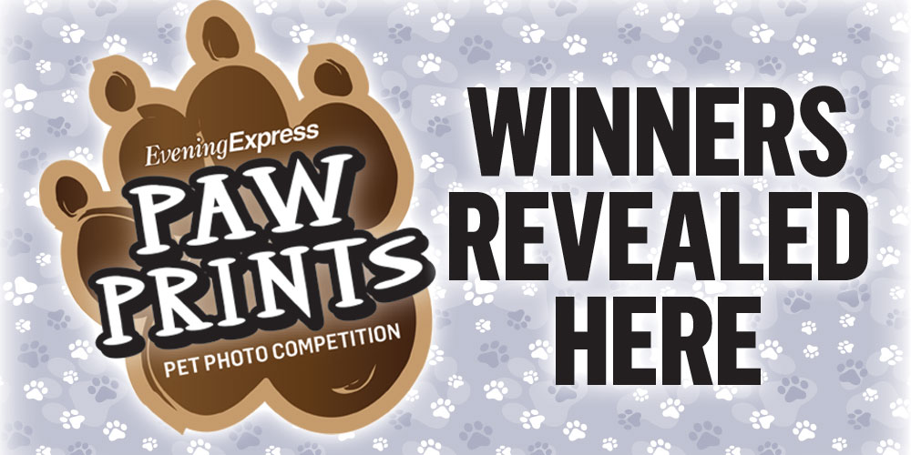 REVEALED: Here are the three winners of our Paw Prints pets photo competition - Evening Express