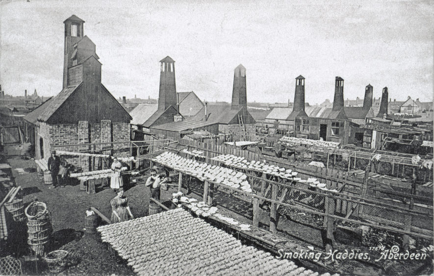 Postcard showing rows of gutted and split haddocks drying in the sun with a row of smoke houses in the background. Likely dating from the early 20th century and showing an area to the west of Old Torry. The most famous local variety of smoked haddock was the finnan haddie.