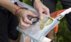 Aberdeenshire Council will be putting on orienteering sessions