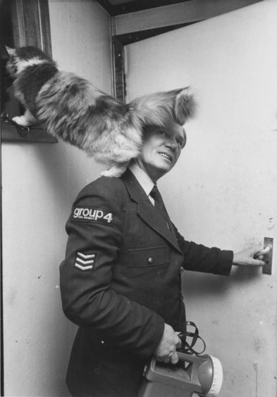 1980: Security guards at an oil pipeyard on the outskirts of Aberdeen have a four-legged friend who goes on patrol with them.