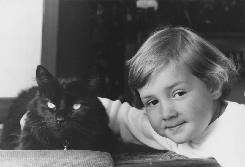 1988: The appearance of a long-haired black tomcat on an Aberdeen doorstep has set Mrs Phyllis Caithness a problem , how did the cuddly animal manage to get there from its home near London?