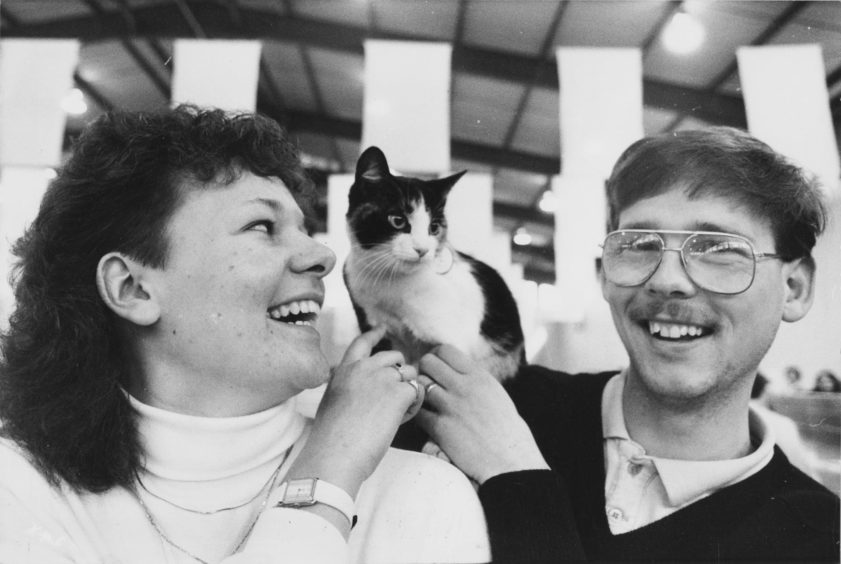 1988: Newly-weds Gordon and Laura Duguid entered Fergie, a seven-month-old tortoiseshell for the show.
