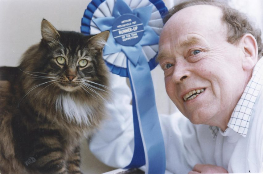 1993: A stray moggie found on an Aberdeen doorstep has come within a whisker of becoming a national champ. Three-year-old Leonardo took the runner-up spot in the Scottish finals of the Spillar's Arthur Household Pet of the Year Show.