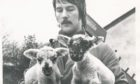 1979: At the Rowett Institute, the lambing season comes round rather more frequently than elsewhere. Two of the latest arrivals are displayed by Duncan McPherson.