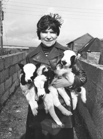 1980: A real handful of mischief for Mrs Jane Cameron, Candy Farm, Drumlithie, as she handles three lambs from her flock of 30 Jacob sheep. Mrs Cameron and her husband, William, are selling out at Candy Farm and our photographer snapped this show yesterday as the sun came out to give perfect sale conditions. The sale had been postponed from Saturday because of heavy snowfall in the area.