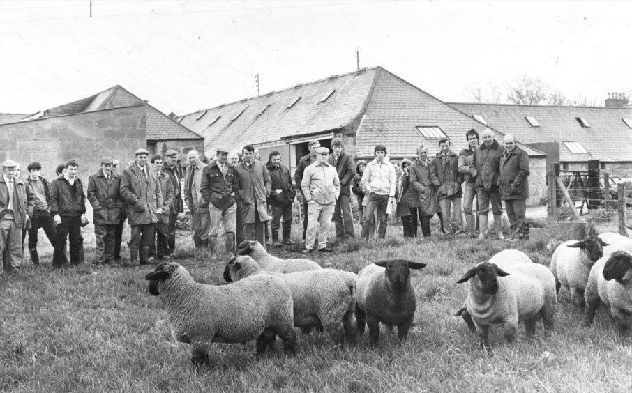 1983: Members of the North-east of Scotland Suffolk Sheep Club this week paid a visit to Mr Sandy Campbell's Kirkton flock at Kinellar, near Aberdeen. They are pictured inspecting the ram lambs destined for the Edinburgh sale in July.