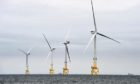 offshore wind development