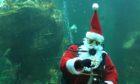 Santa will be back at the Macduff Aquarium