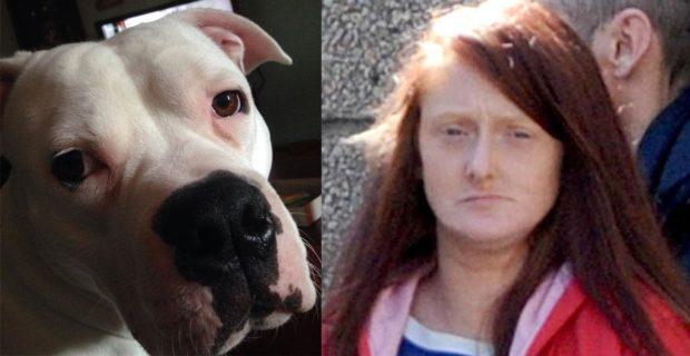 Left, the American bulldog Boston, and right Dana Mullen