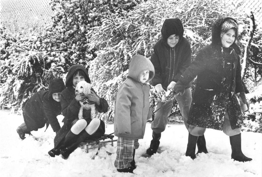 1977: Stockethill children have fun in the snow. They are Karen Craig (7), Deborah Desbois (7), Shirley Craig (2), Michael Craig, and Stacy Stephen (7), all of Stockethill Crescent, Aberdeen.