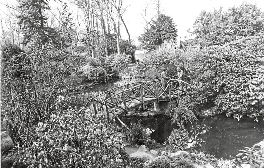 1976: Little but good  although it only extends to three acres Johnston Gardens is one of the loveliest parks in Aberdeen. Its streams, pools, rocks and waterfalls give it an all-the-year round charm, and there are large groups of primulas and herbaceous plants.
