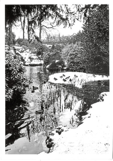 1984: The ponds at Johnston Gardens, Viewfield, Aberdeen.