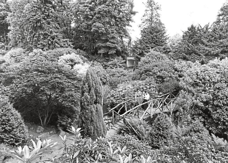 1981: Johnston Gardens.
