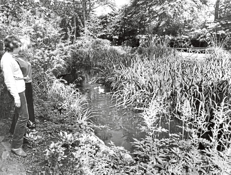 1981: Watching the ducks sporting about in the water are Sarah Burns, Dunblane, and Alison Christie, Pitcaple.