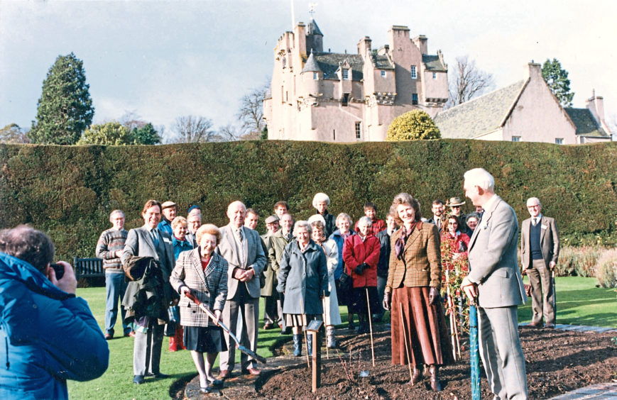 1991: The rose grown to mark the National Trust for Scotlands diamond jubilee  Scotlands Trust  is planted yesterday at the organisations most popular Grampian property, Crathes Castle. Doing the spadework is Mrs Anne Cocker (left) senior partner of James Cocker and Sons, Aberdeen, where the flower was nurtured for six years. Standing beside Mrs Cocker is Mr Donald McKenzie, convener of Kincardine and Deeside Council, and (holding coat) Mr Richard Miller, regional director of the trust. On the right is Mr Jeffrey Boughey, the administrator of Crathes. Next to him is Joyce Mackie, the vice-president of the National Trust for Scotland, and, extreme left at rear, the head gardener, Mr David Maclean. Scotlands Trust joins a rose, Crathes Castle, planted by the Queen Mother in the gardens 11 years ago. Scotlands Trust, a hybrid tea which grows to about 2/1/2 ft, flowers singly and in clusters and has blooms of 40 petals which are light pink with a silver revers