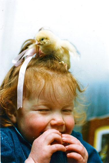 1993 - 'A new-style Easter bonnet! Two-year-old Aleisha Connon of Netherley comes head to head with a one-day chick at the Coney Farm Hatchery, near Stonehaven.'