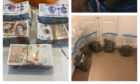 Drugs, cash and a gun were seized in UK-wide raids today.