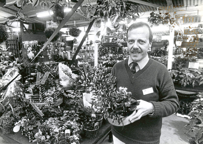 1990: Jimmy McRae has a variety of houseplants for sale.