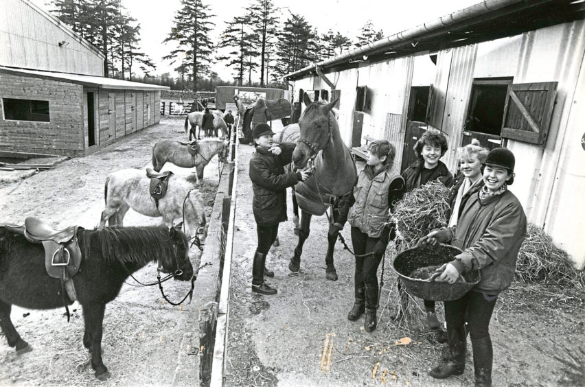 1987: With winter's cold starting to bite and less outdoor exercising for the horses at the Hayfield Riding School at Hazlehead, Aberdeen, attention is paid even more to the warmth and feeding of the mounts. These young girls have their work cut out for them and spend most of their holiday time with their favourites. Gelding Dollar is the horse being fussed over by Tracey Farquhar and companions Lucia McOmish, Jan Williams, Shea Buchanan and Helen Stuart.