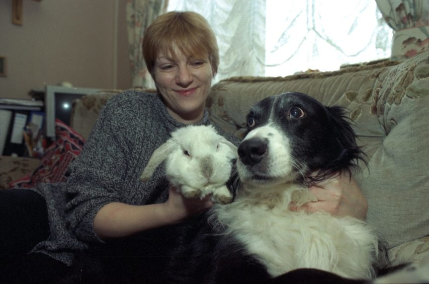 1998 - Diane Melville with her rabbit Holly and dog Rocky.
