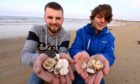 Elliot Findlay and his friend Ryan Chalmers were walking on Fraserburgh beach at the weekend when they saw some unusual sea potato shells