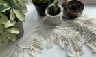 EquiKnotz offers a range of handmade macrame crafts and plant cuttings