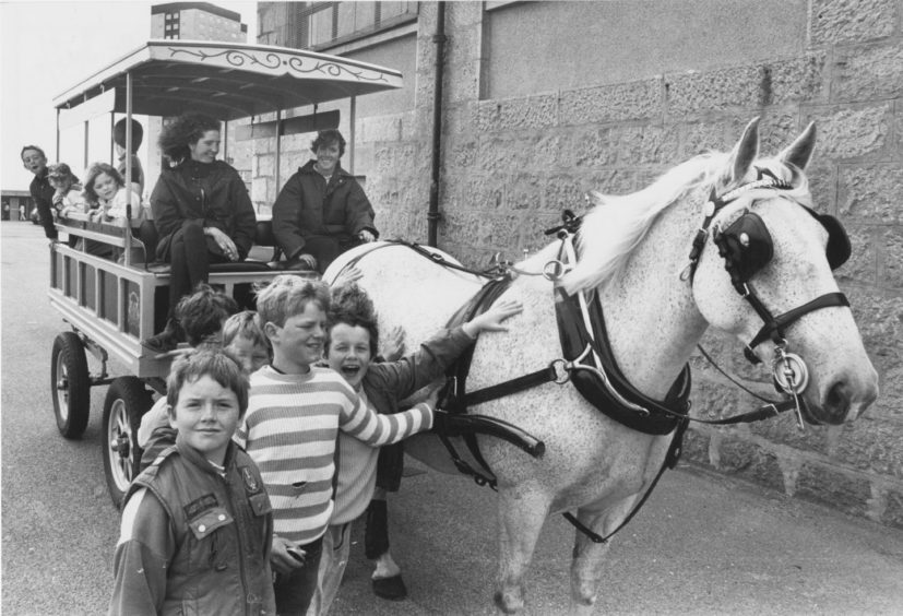 1987 - Proving a big hit with these youngsters at Seaton Community Festival on Saturday is June, the Irish cob. She was taken to the local school by Belinda Clark and Susan Gilbert of Aberdeen City District Council's leisure and recreation to provide carriage rides.